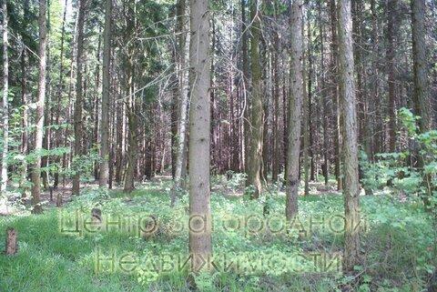 Участок, Киевское ш, Боровское ш, 20 км от МКАД, Милюково, коттеджный . - Фото 3