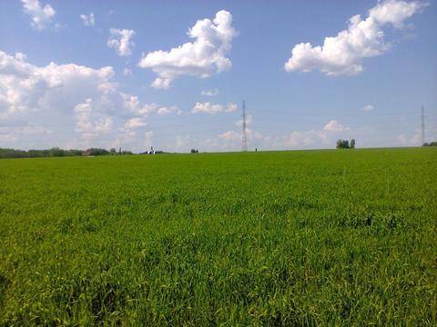 Продам земельный участок 2 км. от города - Фото 2