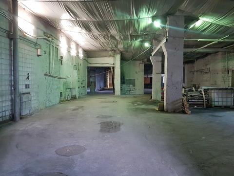 Сдается помещение, 1эт, 1000 кв.м, можно делить, в Красном Селе. - Фото 1