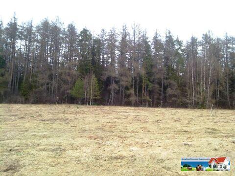 Участок 10 соток в окружении леса - Фото 3