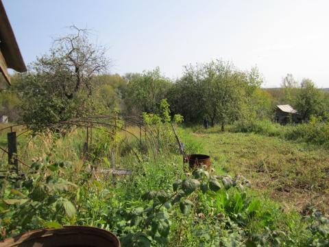 Дача в Алексине Тульской области - Фото 3