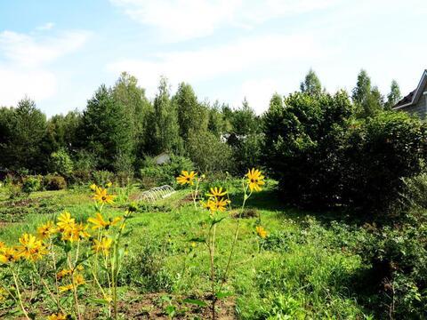 Участок-сад 9 соток, рядом озеро и лес. Магистральный газ. 45 км МКАД. - Фото 2