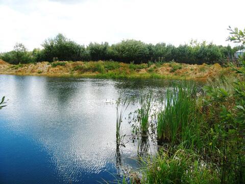 Предлагаю для организации платной рыбалки пруд 1300 кв.м на 1 Га земли - Фото 4