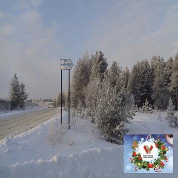 Лесной участок 16 соток , забор с трех сторон в обжитом СНТ - Фото 4