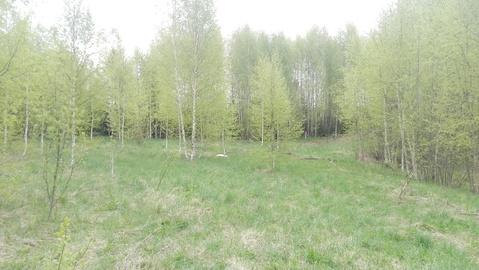 Продажа участка, Никольское, Кадуйский район, - Фото 1