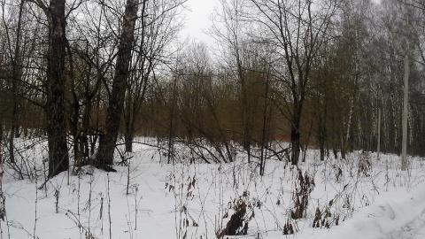 Каширское ш.48 км от МКАД г.о.Домодедово в с.Вельяминово участок23сот - Фото 4