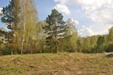 Продам: земельный участок 25 соток - Фото 1