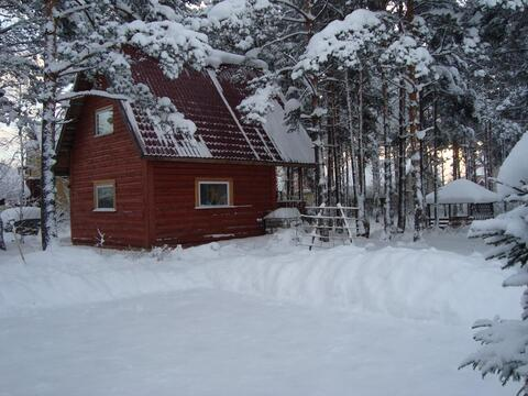 Сдается кирпичный дом 350м2, 3этажа, в пос Токсово, 25 сот - Фото 3
