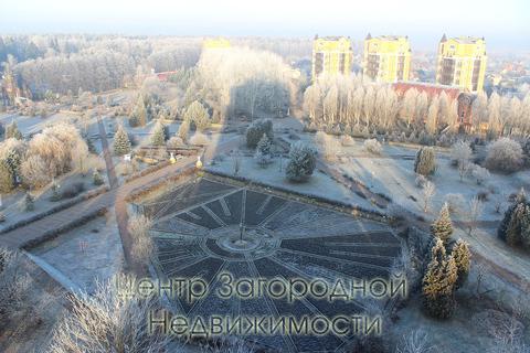 Предприятие сферы услуг, Егорьевское ш, 29 км от МКАД, Жуковский, . - Фото 3