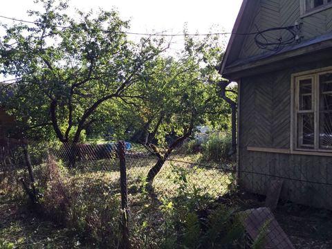 Дача на прилесном участке 7 соток в 33 км. по Ленинградскому шоссе. - Фото 5