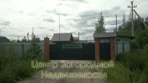 Участок, Пятницкое ш, Новорижское ш, Ленинградское ш, 35 км от МКАД, . - Фото 3