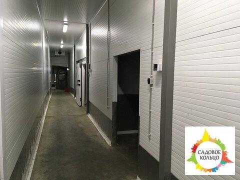 Аренда современной мясной фабрики 1100 м2. с холодильными и морозильны - Фото 3
