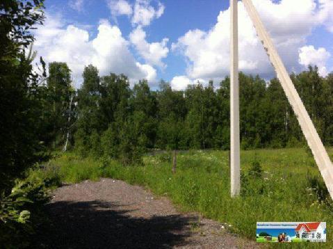 Уютный участок 12,5 соток у леса рядом с рекой Искона, д. Пуршево - Фото 2