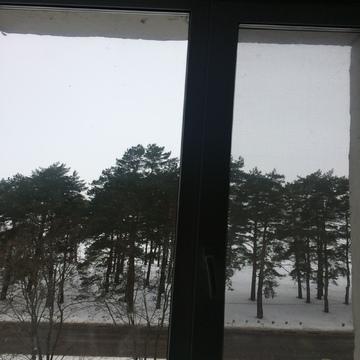 3-ка на первой линии от Волги в Конаково - Фото 3