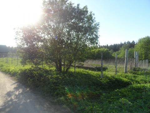 Земельный участок ИЖС 12 соток - Фото 1