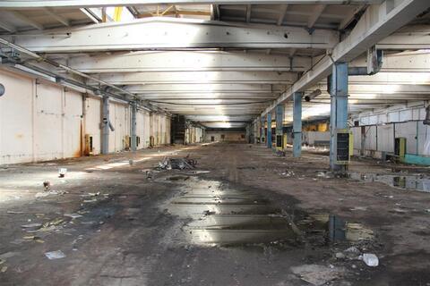 Производственный комплекс 30 000 кв.м. - Фото 4