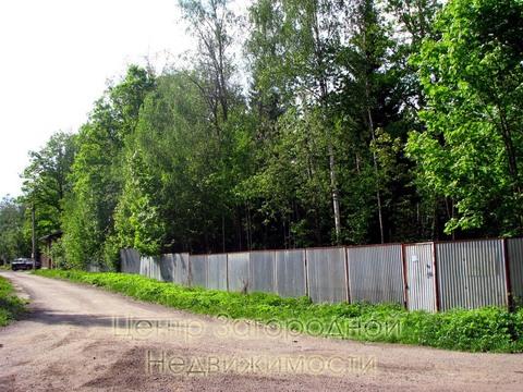 Участок, Дмитровское ш, Ярославское ш, 40 км от МКАД, Сазонки д. . - Фото 4