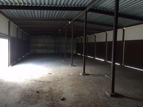 Сдам складское помещение 300 кв.м, м. Звездная - Фото 4