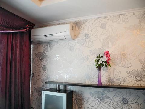2-ком. кв. в аренду. vip. Центр, Плехановская, Европа-банк, Галерея. - Фото 5