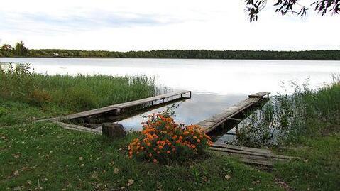 Участок 13 соток в д.Озерки, Клепиковского района. - Фото 2