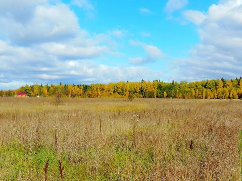 Земельный участок 245 соток, Серпуховский р-н, д. Шатово - Фото 5
