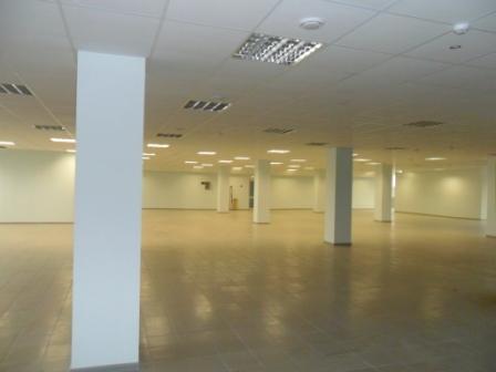Магазин общей площадью 1000 кв.м.