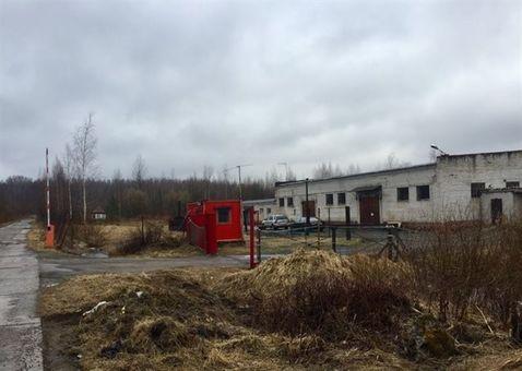 Сдам складское помещение 1850 кв.м, м. Проспект Ветеранов - Фото 1