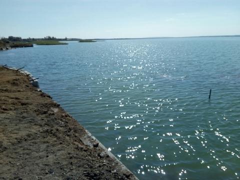 Участок 25 соток с береговой линией - Фото 3