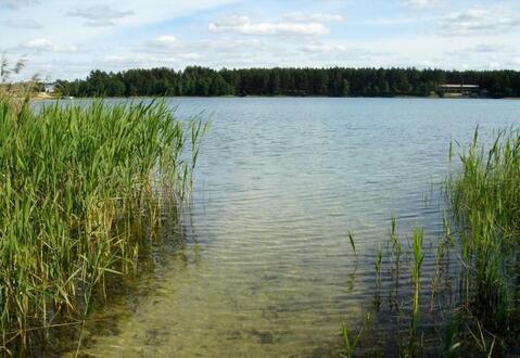 Участок 14 соток у озера в д.Мосеево, Клепиковского района.