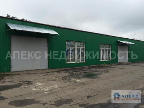 Продажа помещения пл. 5790 м2 под склад, производство, Домодедово . - Фото 4