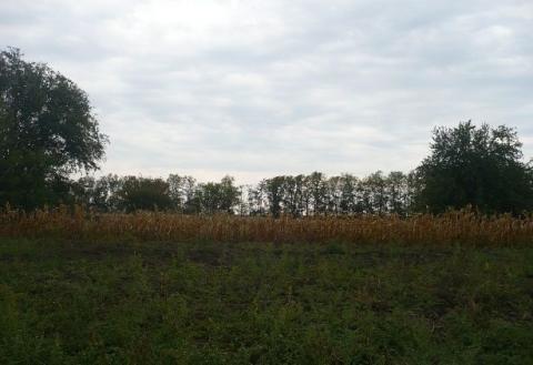 Фермерское хозяйство обоснованное на базе домашнего - Фото 5