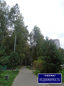 3 комнатная квартира в Троицке, ул.Солнечная дом 2 - Фото 3