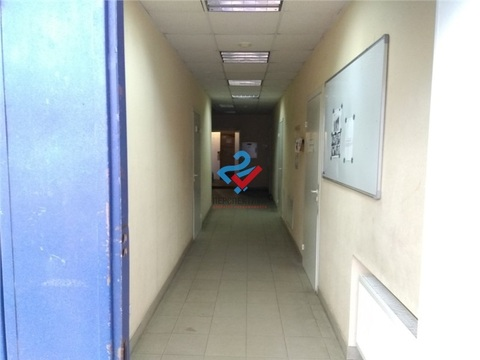 Офис 50,5м2 на Пушкина 42 - Фото 3