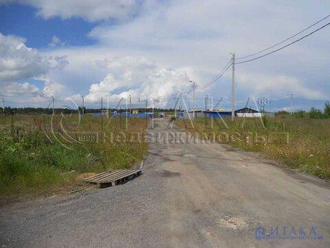 Продажа участка, Низино, Ломоносовский район, Ул. Центральная - Фото 4