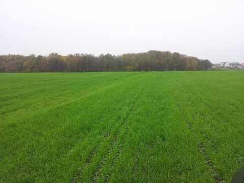 Продам: земельный участок 1000 соток - Фото 3