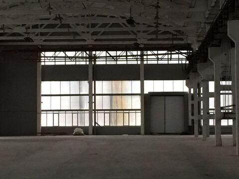 Продажа под производство 5000 кв. м, Белая Калитва - Фото 3