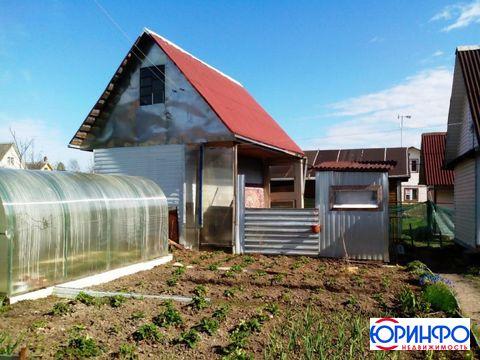 6 соток с домом и баней для настоящего хозяйственника в СНТ Невское . - Фото 5