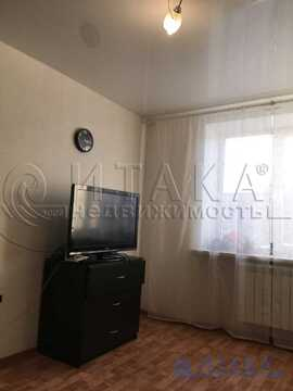 Продажа комнаты, м. Проспект Ветеранов, Ул. Партизана Германа - Фото 1