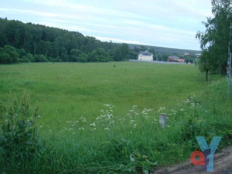 Земельный участок 10 сот. д.Сатино-Татарское, 31 км от МКАД Варшавское - Фото 5