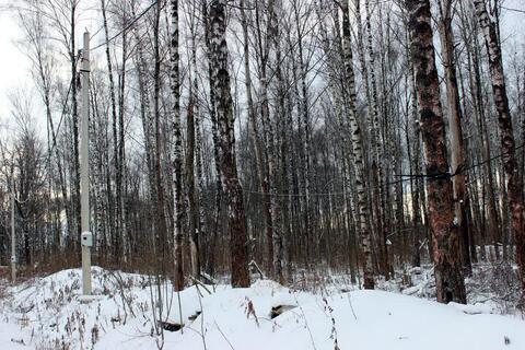 Лесной участок в Пучково - пригороде г. Троицк - Фото 1