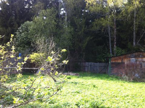 Дачный домик у леса в дачном поселке Бабаево, Рузский район, 93 км. - Фото 3