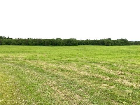 Продается земельный участок 3,7 га.сх(ИЖС) у леса в Домодедово - Фото 1