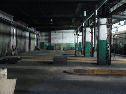 Помещения под офис, производство, ремонт, склад в г. Тосно - Фото 5