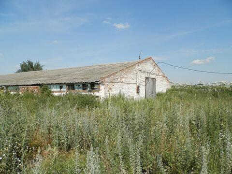 Коммерческая недвижимость, Спас-Конино село, Алексинский район - Фото 5