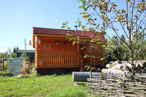 Пп Супер цена дача гостевой дом баня лес грибы ягоды рядом жд станция - Фото 4