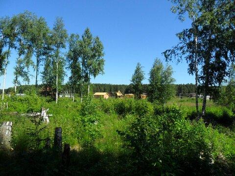 Участок 15 соток у леса - Фото 4