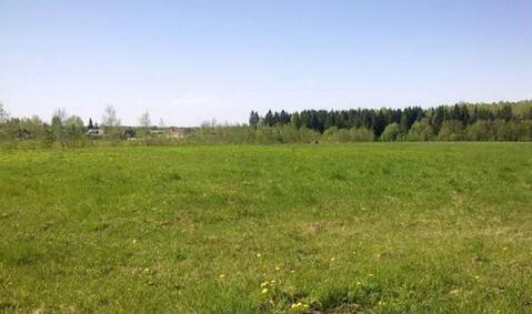Купить ровные земельные участки по 3 га в Гатчинском районе у озера - Фото 5