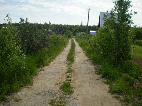 Конаково, лес, вода - недорогая земля в СНТ Малиновка - Фото 3