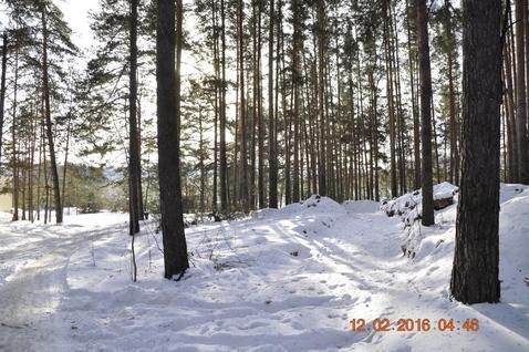 Коттедж 17 км от Екатеренбурга - Фото 2