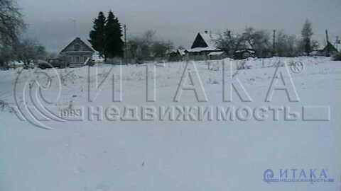 Продажа участка, Вруда, Волосовский район, Ул. Центральная - Фото 3